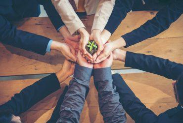 Práticas sustentáveis fazem parte do dia a dia da Acervo