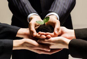 Saiba como você pode contribuir com a sustentabilidade ao digitalizar documentos